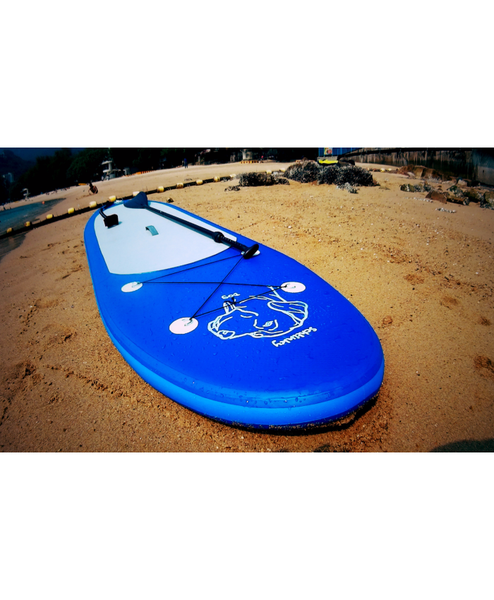 Inflatable Paddle Board 10 ft